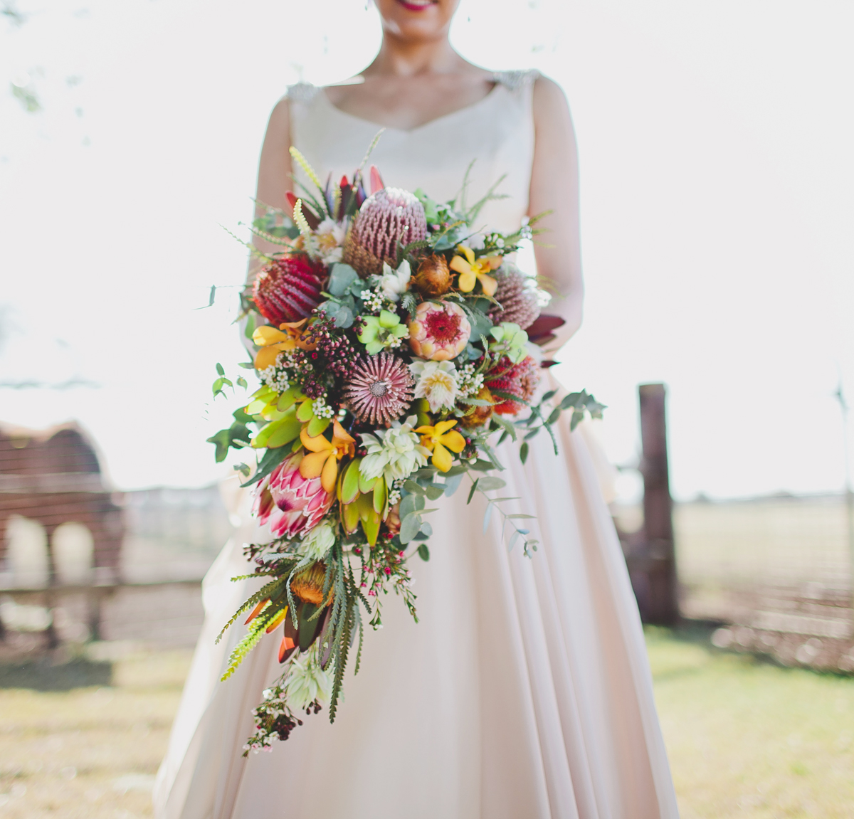 australian native flower wedding bouquets photo - 1