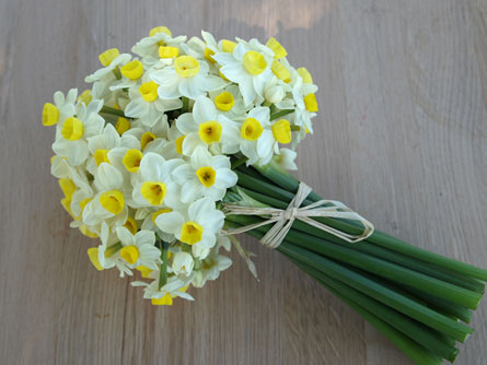 daffodils wedding bouquets photo - 1