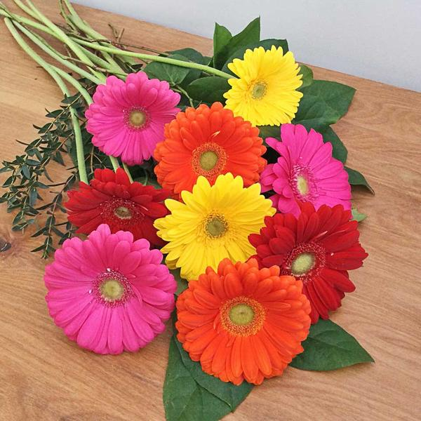 gerbera daisy wedding bouquet photo - 1