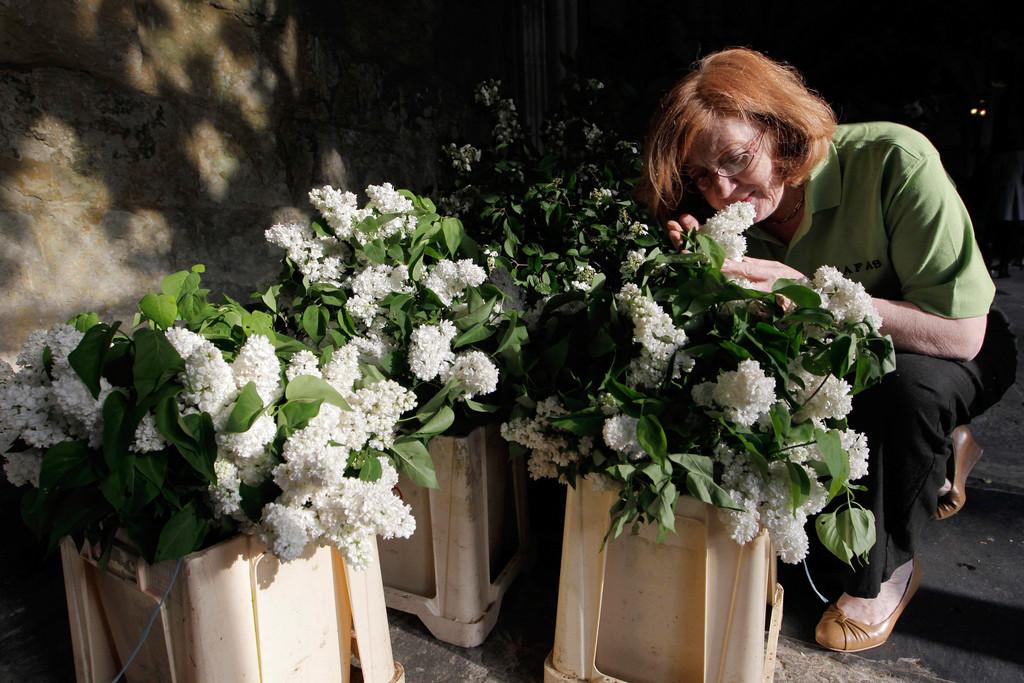 royal wedding bouquets photo - 1