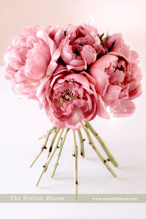 wedding flowers ideas photo - 1