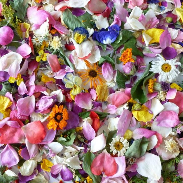 wedding flowers petals photo - 1