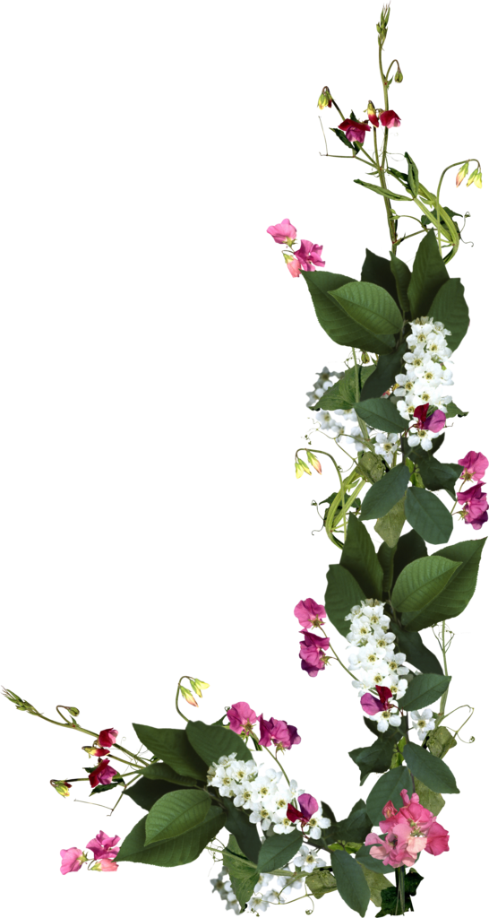 wedding flowers png photo - 1