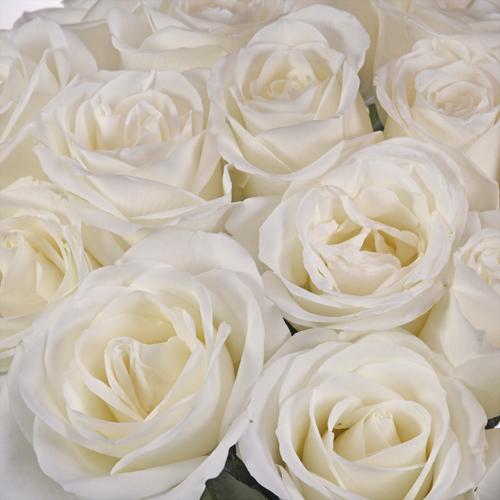 costco wholesale flowers wedding photo - 1