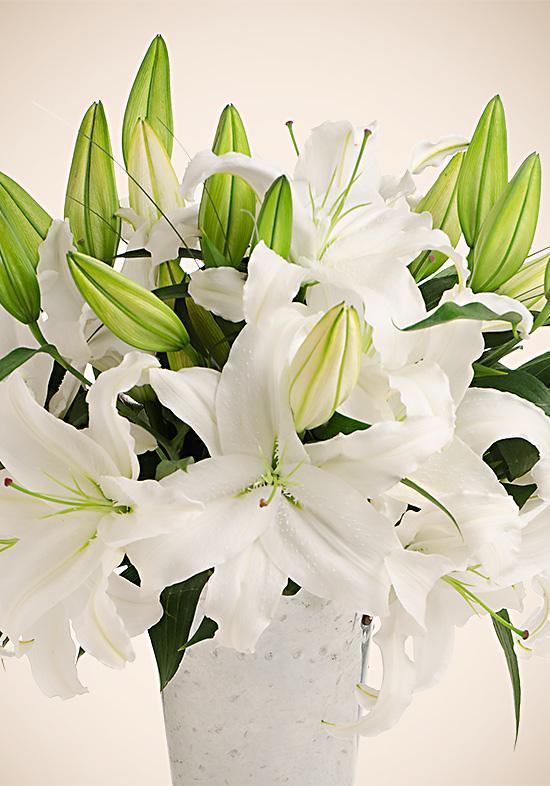 lily wedding flowers photo - 1