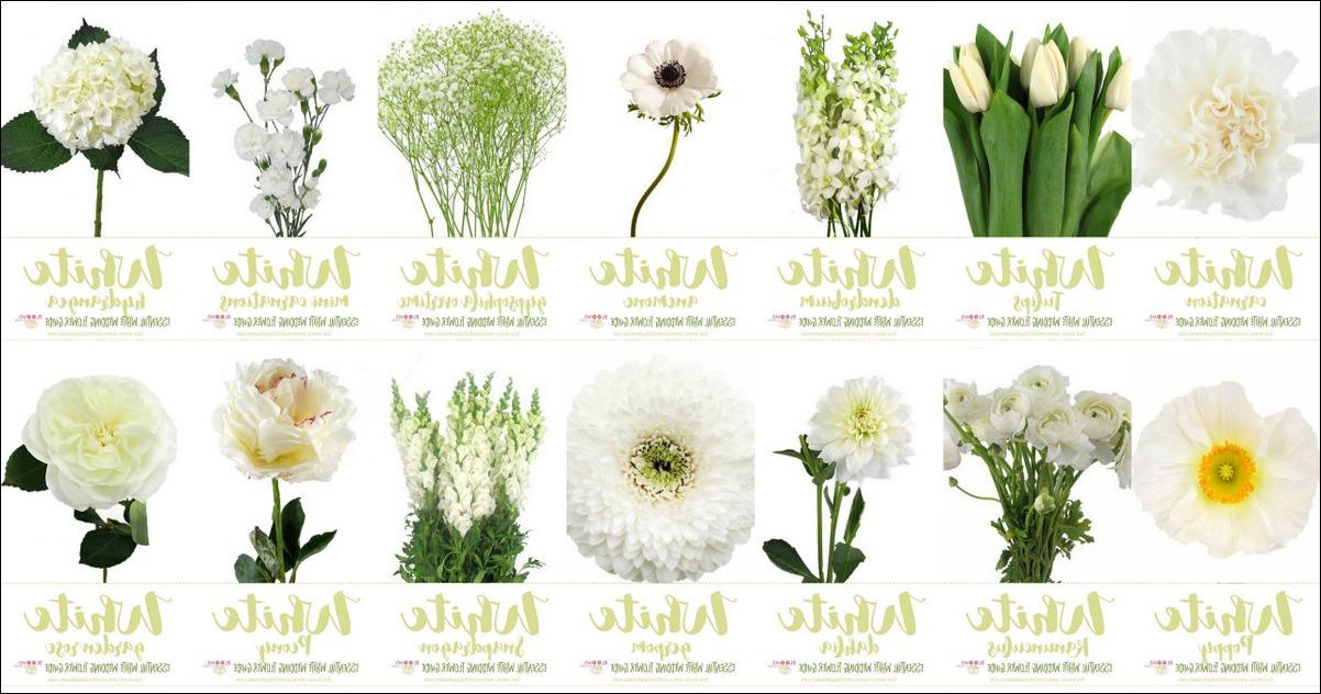 types of wedding flowers photo - 1