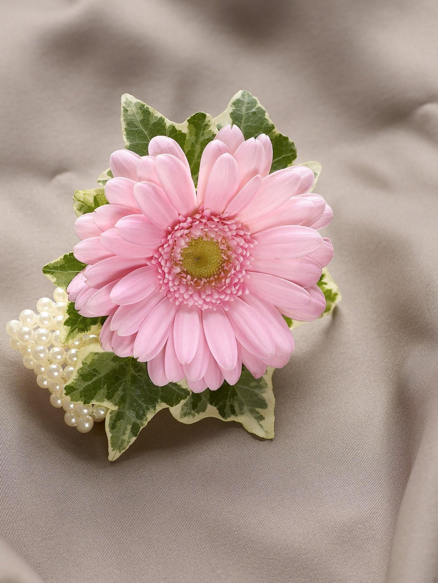 wedding flowers corsage photo - 1