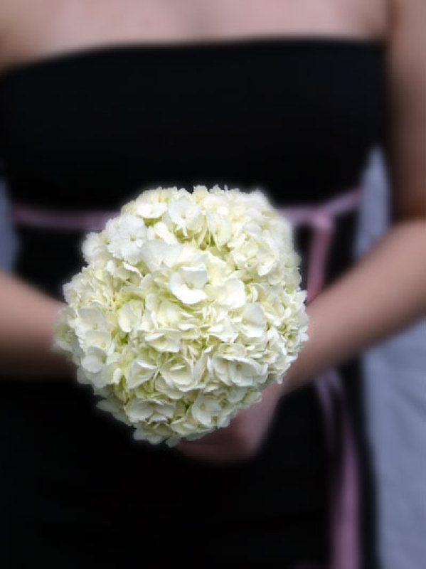 white hydrangeas wedding bouquets photo - 1
